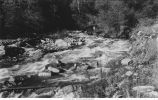 Falls and rapids on roaring Jim Creek, Jamestown, Colo., late 1890s or early 1900s