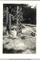 Denise, the dog sitting under the playhouse trellis