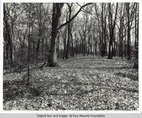 Native American burial mounds