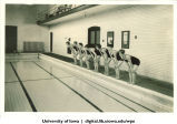 Swimmers, The University of Iowa, 1934
