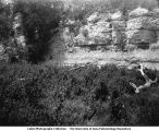 Ravine, Winterset, Iowa, late 1890s or early 1900s