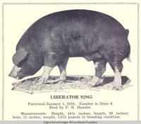 Liberator 92965