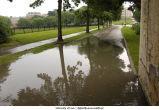 Iowa Avenue flooded, The University of Iowa, June 12, 2008