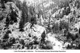 Mountain view in Jim Creek canyon, Jamestown, Colo., late 1890s or early 1900s