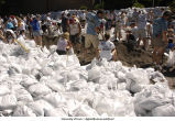 Volunteers sandbagging, The University of Iowa, June 14, 2008