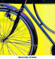 Yellow Bike