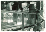 Examining water flow in Hydraulics laboratory, The University of Iowa, 1948