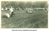 Barrel rolling race in City Park as part of Senior Frolic, The University of Iowa, 1912