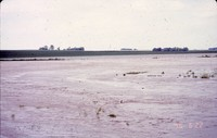Flooded field - 1996.