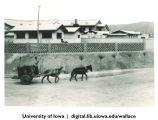 Horse-drawn cart, China, 1944