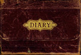 Mary Griffith diary, 1880