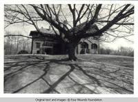 Grey house behind tree