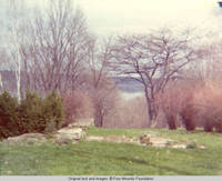 Rock garden in the Spring