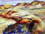 Marsh; meadows; mounds