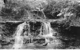 Gorge at Pinney's Spring, Iowa, late 1890s or early 1900s
