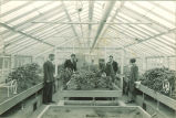 Students in greenhouse, The University of Iowa, 1940s