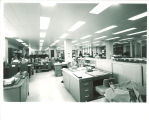 Cataloging department in the Main Library, the University of Iowa, April 1970