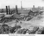 Kilns and sheds of Iowa Pipe and Tile Works, Des Moines, Iowa, late 1890s or early 1900s