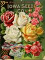 Iowa Seed Company Catalog 1903