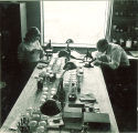 Working with plant specimens and microscopes, The University of Iowa, 1940s