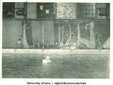 Swimming, The University of Iowa, 1933
