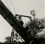 Farm safety problem of child climbing conveyor belt, viewed from below, 1953