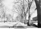 Snow on Pentacrest on Clinton Street, Iowa City, Iowa, November 10, 1947