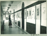 Woman views displays in Art Building, the University of Iowa, 1930s?