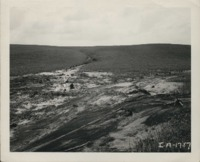 Erosion on the Van Roekel farm.