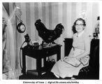 Florence Falk and rooster at table in dining room where Farmer's Wife broadcast originated, Shenandoah, Iowa, 1950s