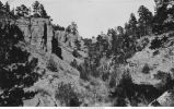 Gorge in Triassic limestone with special forms, southern edge of the Black Hills uplift, Cascade, S.D., late 1890s or early 1800s