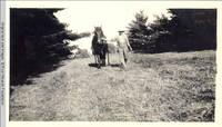 John Heitzman leading horse