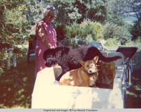 Elizabeth with dogs, Sadie and Victoria in the back of golf cart