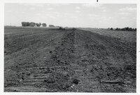 Bulldozed farmland