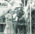 Students studying a banana tree, The University of Iowa, 1950s