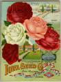 Iowa Seed Company Catalog 1916