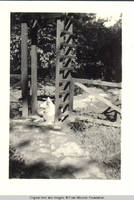 Denise, the dog sitting under the playhouse trellis