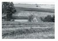 Bausch pond, 1965