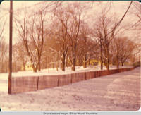 View of snow fence that runs along the main drive in Winter