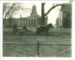 Horse-drawn wagon seeding the east lawn of the Pentacrest in front of Old Capitol, The University of Iowa, 1930