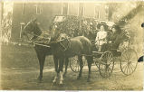 Women with large hats in horse-drawn carriage, Wyoming, Iowa, October 1, 1910