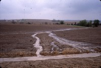 Erosion damage, and waterway needs in a field.