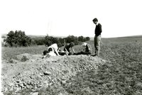 Soil judging contest, 1984