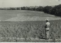 Edmunud Sommers countour farming, 1945