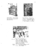 Wehrmann Genealogy, Part 1 - pp. 151-200
