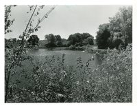 Wilson Lake, Lee County