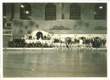 Dolphin Follies at Field House, The University of Iowa, October 1939