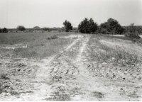 1995 Terraces on Dale Edmonds' Farm