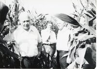 Five men stand in corn on no-till tour