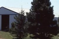 Carver farmstead.